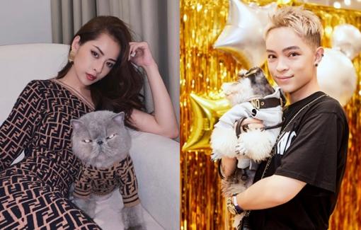 Khi sao Việt đồng điệu thời trang với... thú cưng