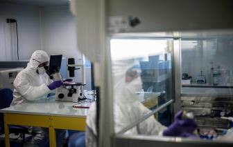 Đột phá trong nghiên cứu coronavirus: Xác định được cấu trúc phân tử của virus