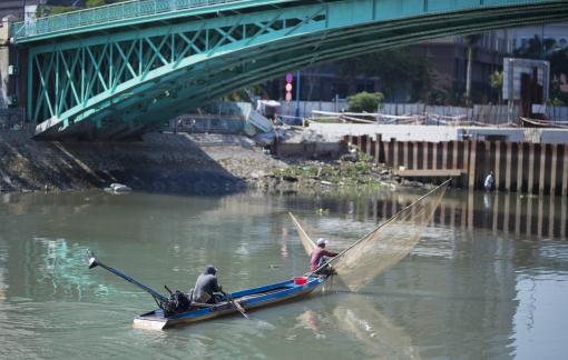 Sau kênh Nhiêu Lộc đến lượt kênh Tàu Hủ bị tận diệt cá