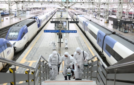 Hàn Quốc sẽ kiểm tra y tế hơn 200.000 người, Nhật Bản thêm ca tử vong từ tàu du lịch