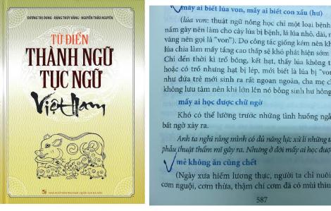 """Thu hồi, tiêu hủy """"Từ điển thành ngữ tục ngữ Việt Nam"""""""